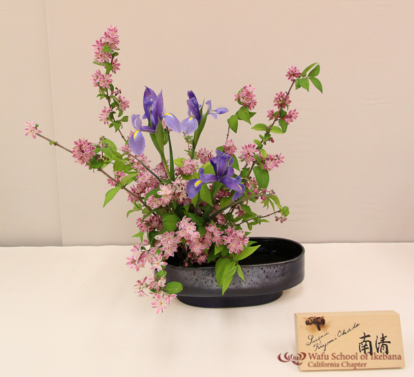 gallery10 - 05_Susan_Okada_9274.jpg
