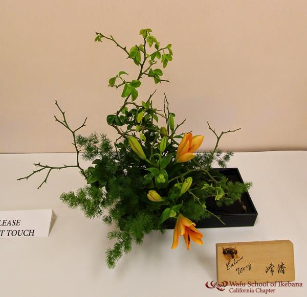 gallery8 - Calvin_Wong_Hosei_.jpg