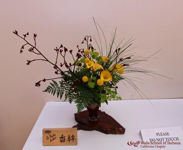 gallery8 - LaPaula_Sakai_Kouhan_-1.jpg