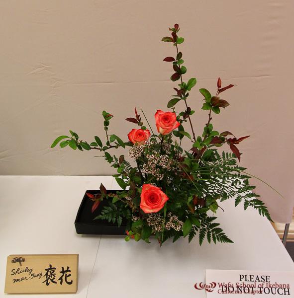 gallery8 - Shirley_Mar-Tang_Houka_.jpg